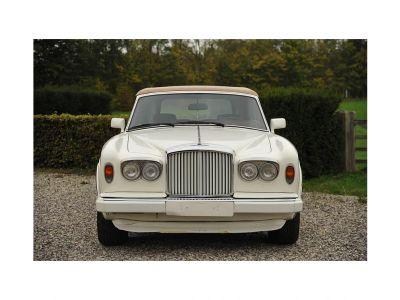 Bentley Continental Continental Cabrio   - 2