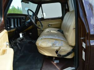 Ford F250 1979   - 10