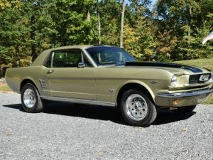 Ford Mustang 1966   - 1