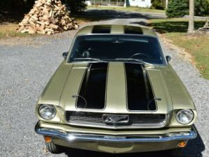 Ford Mustang 1966   - 2
