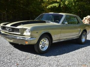 Ford Mustang 1966   - 3