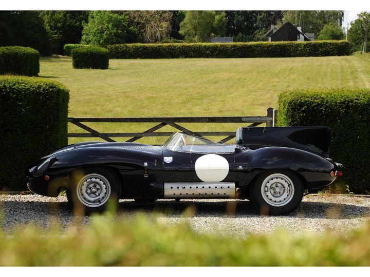 Jaguar D-Type D-Type - 3