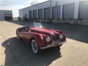 Jaguar XK 1953   - 7